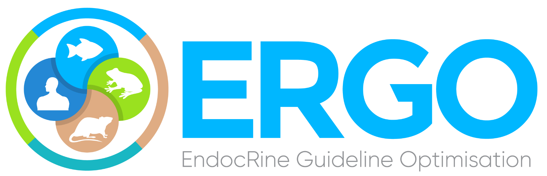 ergo project logo